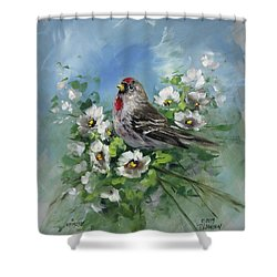 Redpole And Blossoms Shower Curtain by David Jansen