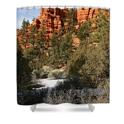 Redrock Winter Shower Curtain