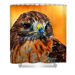 Redtailed Hawk Shower Curtain