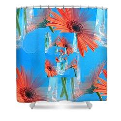 Redundant Gerbera Daisy Shower Curtain