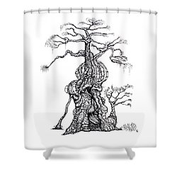 Redwood Tree Castle Drawing Shower Curtain