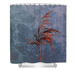 Reed #f9 Shower Curtain