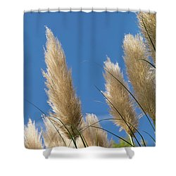 Reeds Against Sky Shower Curtain