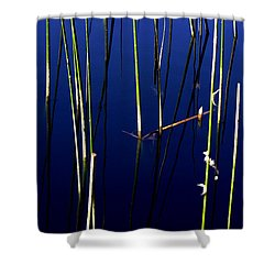 Reeds Of Reflection Shower Curtain by Chris Brannen