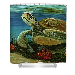 Shower Curtain featuring the painting Reef Honu by Darice Machel McGuire