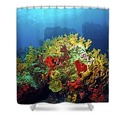 Reef Scene With Divers Bubbles Shower Curtain