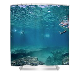 Reef Surfers Shower Curtain by Sean Davey