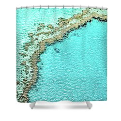Shower Curtain featuring the photograph Reef Textures by Az Jackson