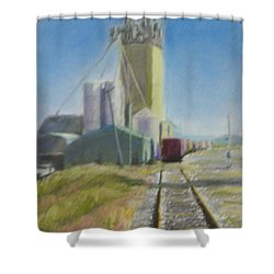 Refill Shower Curtain