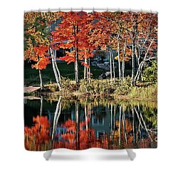 Shower Curtain featuring the photograph Reflected Beauty by Aimelle