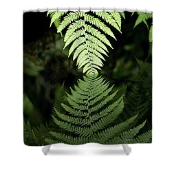 Reflected Ferns Shower Curtain