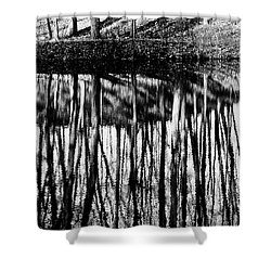 Reflected Landscape Patterns Shower Curtain