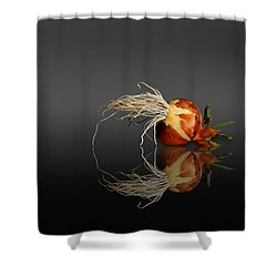 Reflected Onion No. 3 Shower Curtain