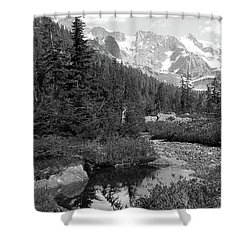 Reflected Pine Shower Curtain