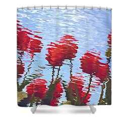 Shower Curtain featuring the photograph Reflected Tulips by Tom Vaughan