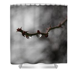 Reflected World  Shower Curtain