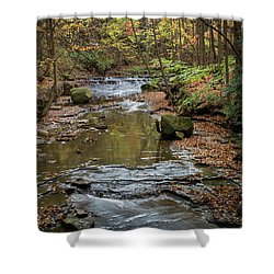Shower Curtain featuring the photograph Reflecting Autumn by Dale Kincaid