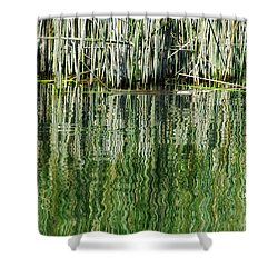Reflecting Back Shower Curtain by Donna Blackhall
