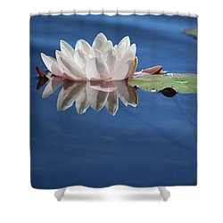 Reflecting In Blue Water Shower Curtain