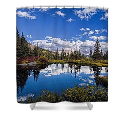 Reflecting Shower Curtain
