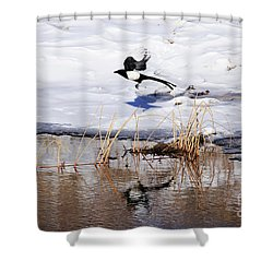 Reflecting Magpie Shower Curtain