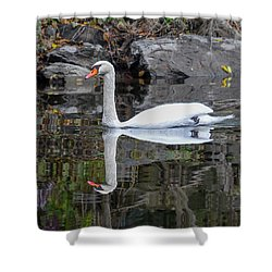 Reflecting Mute Swan Shower Curtain