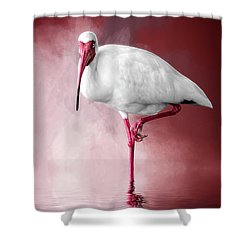Reflecting On Life Shower Curtain