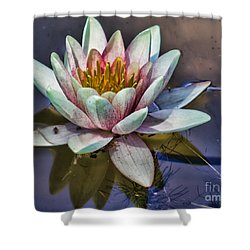 Reflecting Petals Shower Curtain