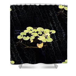 Reflecting Pool Lilies Shower Curtain by Tim Allen