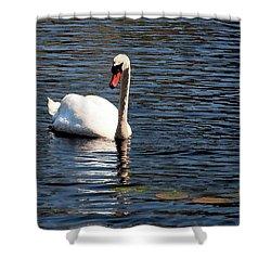 Reflecting Swan Shower Curtain