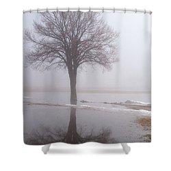 Reflecting Tree Shower Curtain