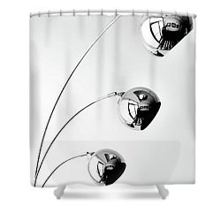 Reflection And Refraction 2 Shower Curtain