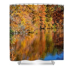 Reflected Fall Foliage Shower Curtain by Allan Levin
