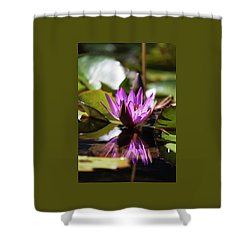 Shower Curtain featuring the photograph Reflection In Fuchsia by Suzanne Gaff