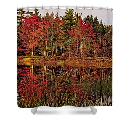 Shower Curtain featuring the photograph Reflection Island by Kathleen Sartoris