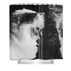 Reflection Shower Curtain by Karen Stahlros