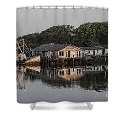 Reflection Noitcelfer Shower Curtain by Roberta Byram