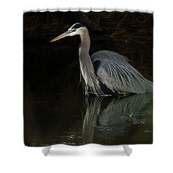 Shower Curtain featuring the photograph Reflection Of A Heron by George Randy Bass