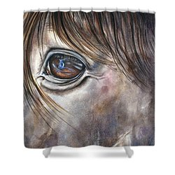 Reflection Of A Painted Pony Shower Curtain by Mary McCullah