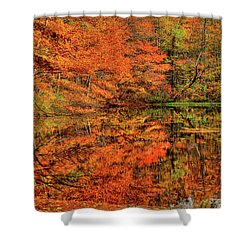 Reflection Of Autumn Shower Curtain by Midori Chan