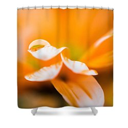 Reflection Of Yourself Shower Curtain