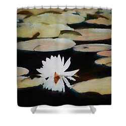 Shower Curtain featuring the painting Reflection Pond by Debra     Vatalaro