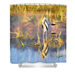 Reflection Shower Curtain by Pravine Chester