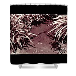 Reflections 2 Shower Curtain by Mukta Gupta