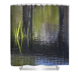 Reflections Accents Shower Curtain by Morris  McClung