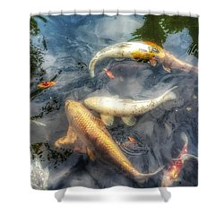 Reflections And Fish 2 Shower Curtain by Isabella F Abbie Shores FRSA