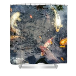 Reflections And Fish 3 Shower Curtain by Isabella F Abbie Shores FRSA