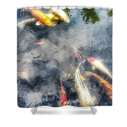 Reflections And Fish 4 Shower Curtain by Isabella F Abbie Shores FRSA