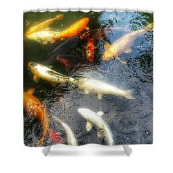 Reflections And Fish 5 Shower Curtain by Isabella F Abbie Shores FRSA