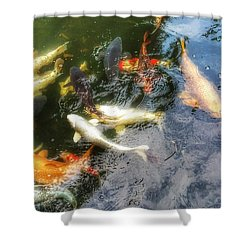Reflections And Fish 6 Shower Curtain by Isabella F Abbie Shores FRSA
